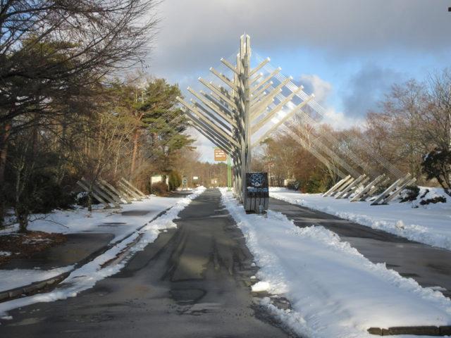 12月22日の夜に、約15cmの降雪がありました